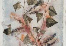 Nature III - 33 x 48 cm - € 325,-